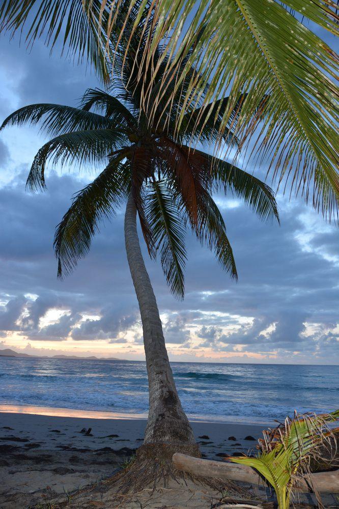 Sunset at Diamant beach Martinique