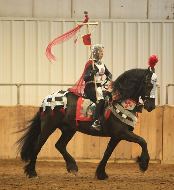 Medieval horse and knight