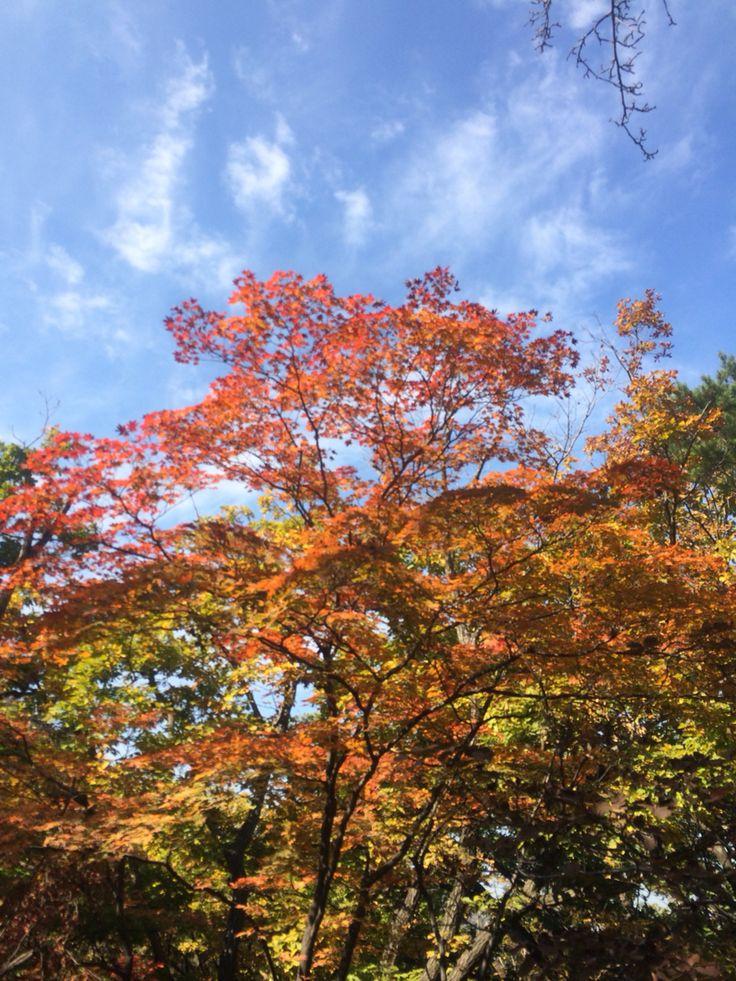 가을을 입은 북한산.