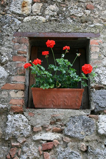 Red Terracotta Stone : Best images about balconies and window flower boxes so