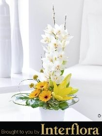10 best spring flowers images on pinterest spring colors spring ultimate chic orchid and germini arrangement mightylinksfo
