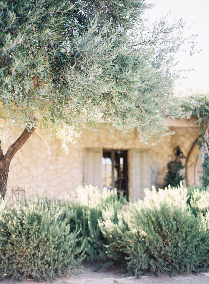 Un jardin méditerranéen, tout en sobriété                                                                                                                                                                                 Plus