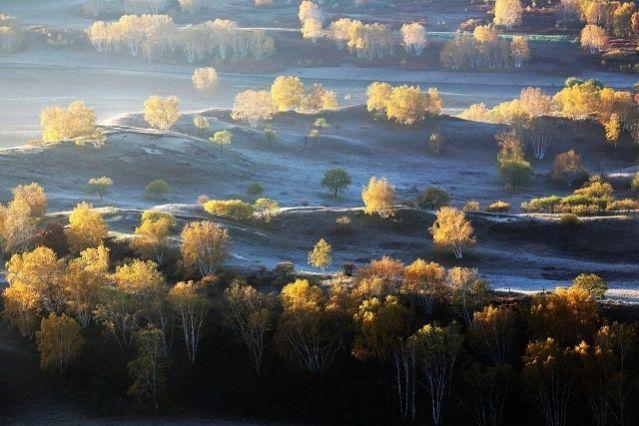 L'un des plus vastes projets écologiques au monde : la grande muraille verte de Chine - France Inter