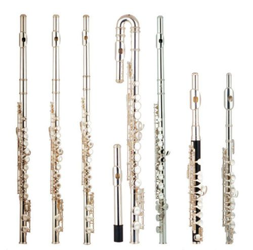 Flute family. All different instruments, with a similar colour, (sound wise, yes colour denotes a sort of sound) but each one with unique qualities-shape, size, etc. Some overlap in the sounds they can make, but two different classification instruments likely don't play the exact same pitches, although I'm not sure if there is an exception- can you think of any?