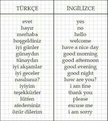 Basic phrases | Türkçe