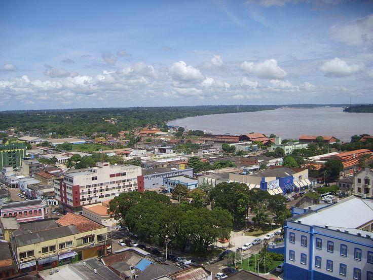 Prefeitura de Porto Velho inicia plantio de 3 mil novas árvores em calçadas