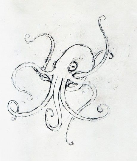 Octopus Sketch | Leeviathan