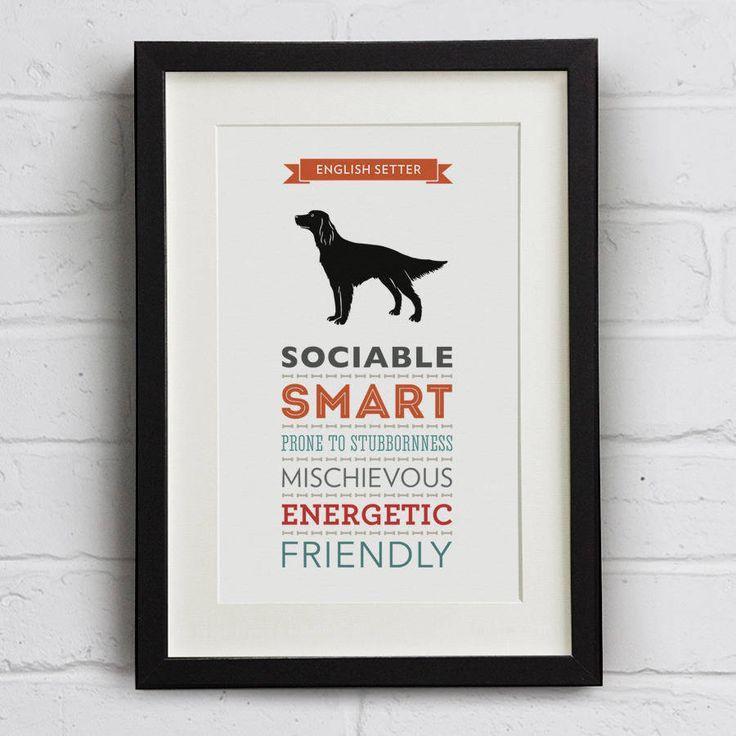English Setter Dog Breed Traits Print