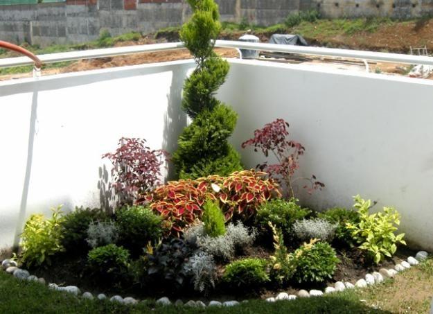 Jardineria y paisajimo decoracion en jardines arboles y for Paisajismo jardines fotos