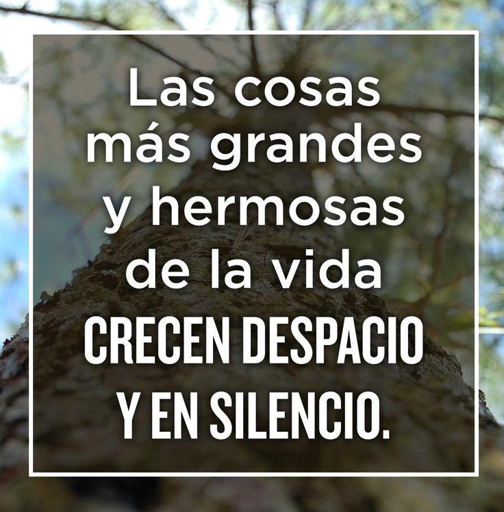 Despacio y en silencio....