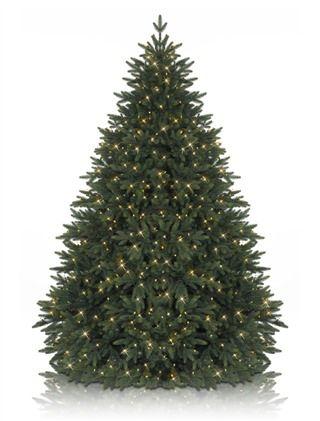 The 25+ best Balsam fir christmas tree ideas on Pinterest   Balsam ...