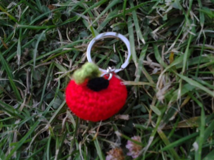 Manzana llavero