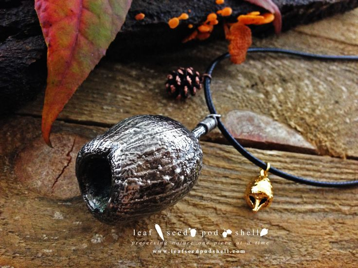 This antique silver Australian gum nut was just added to our store. Link is in our bio. Love the cute antique copper cone and gold plated miniature gum nut. #leafseedpodshell #leafseedpodshelljewelry #birdhouse #leaves #leaf #acorn #acorns #seeds #pods #shells #copper #electroform #electroforming #electroformed #electroplated #electroplating #nature #natural #rustic #plating #jewelry #jewellery #pendant #pendants #handmade #handmadejewelry