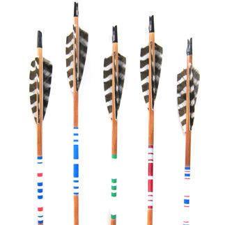 Field Archery Arrow Set - Three Potato Four - $79.99 - domino.com