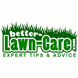 White grubs can do a lot of damage to your lawn before you know they are there.  How to identify and control lawn grubs before they destroy your lawn.  Natural and traditional control options.