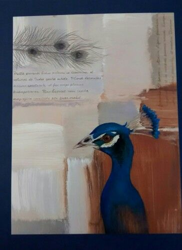 Tom wood style bird painting, peacock, textured background, painted with gouache and acrylic by Karolina Czerwinska