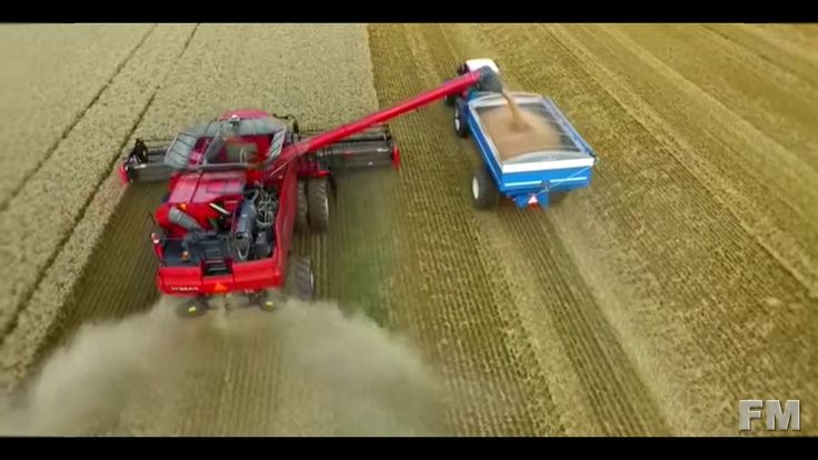 Wheat Harvest in austria 2015. !FM!.