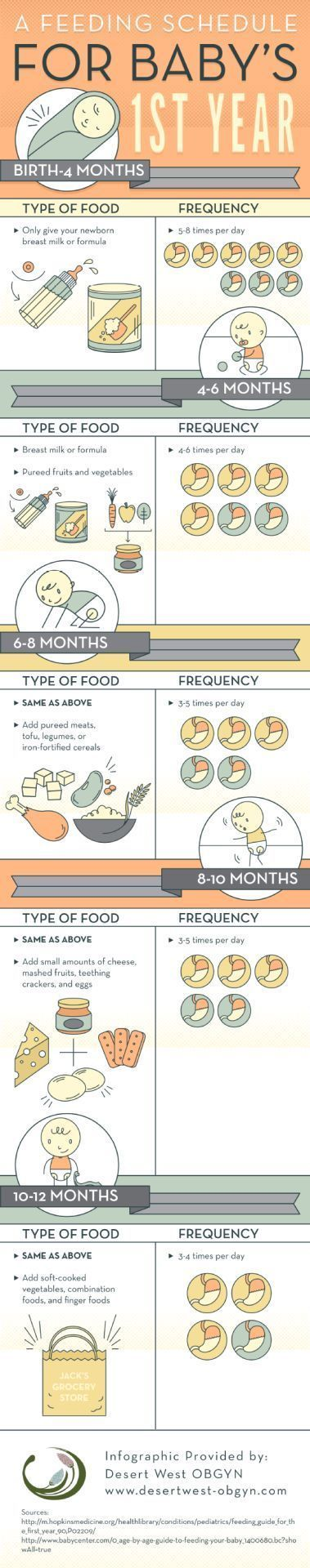 Start feeding your baby between 3 and 5 times each day when he reaches 6 months of age. You can introduce him to pureed meats, tofu, legumes, or iron-fortified cereals during this time! Learn more by...