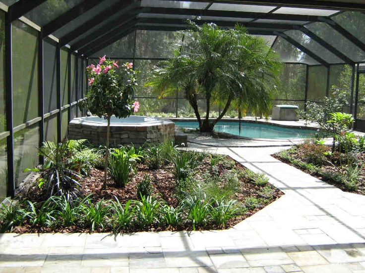 11 best tampa landscape design tropical oasis images on for Pool design tampa