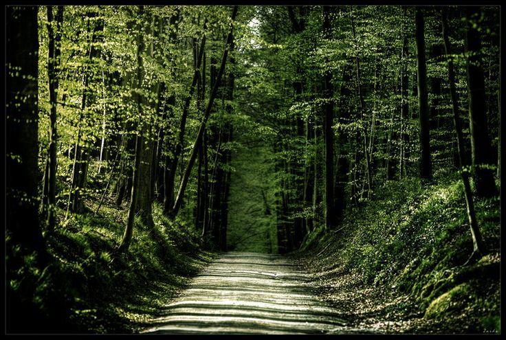 Green river by zardo.deviantart.com