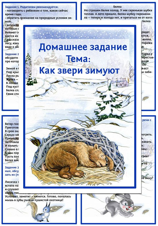 домашнее задание как звери зимуют