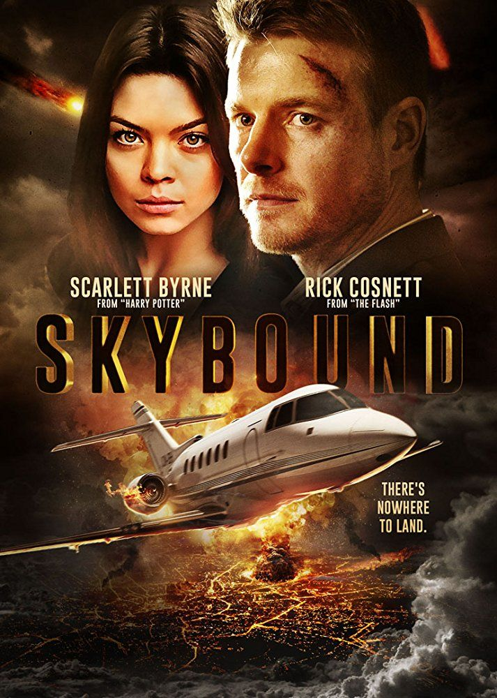 Skybound 2018 Hindi Org Dual Audio 720p Bluray 700mb Esubs With