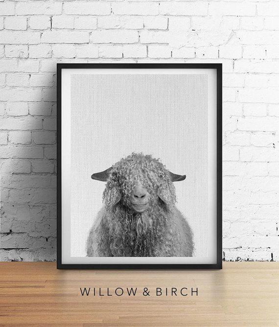Curly SHEEP Printable Art Animal Nursery by WillowandBirchPrints