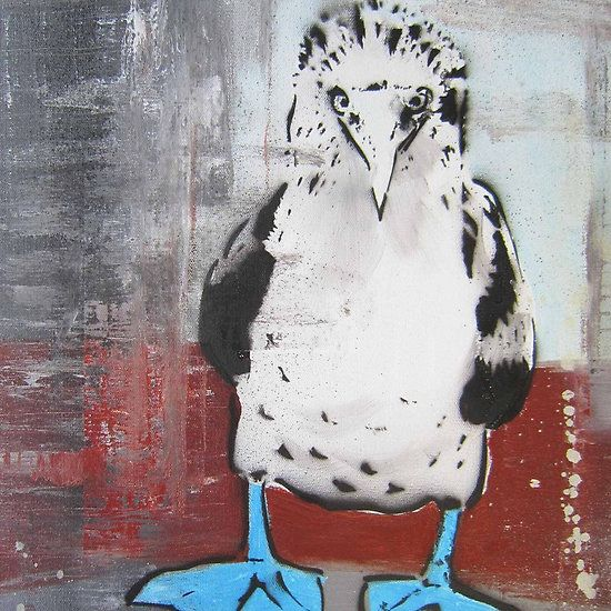 Blue Footed Boobie Love this print!