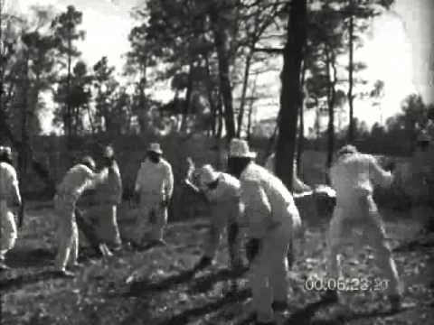 Black Prison Work gangs