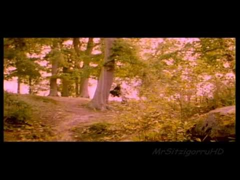 Enya - The Celts Official Music Video © 1992