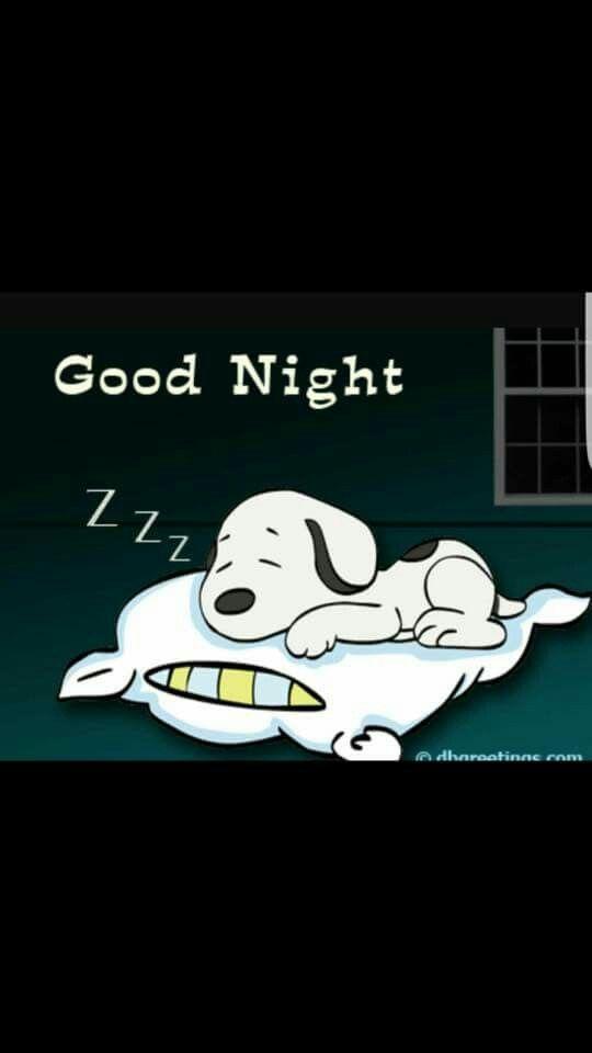 Good Night. Snoopy sleeping on a pillow.
