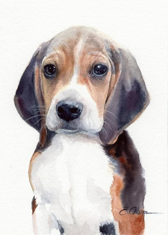 Original Watercolor Beagle Painting Beagle Puppy Painting Dog