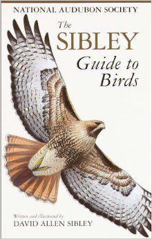 The Sibley Guide to Birds: David Allen Sibley: 9780679451228: Amazon.com: Books