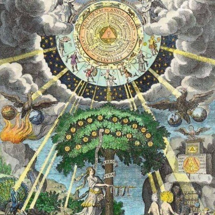 """""""Ahora ya saben lo que significan las bolas brillantes en el árbol de Navidad: no son sino los cuerpos celestes el Sol la Luna y las estrellas.  El árbol de Navidad es el árbol del mundo. Pero -como muestra claramente el simbolismo alquímico- es también un símbolo de transformación un símbolo del proceso de autorrealización"""". Carl Gustav Jung (O.C. E. 1977 p. 342).  Feliz navidad!!  #astrologia #psicologia #navidad #astros #alquimia #jung #astrology #psico"""
