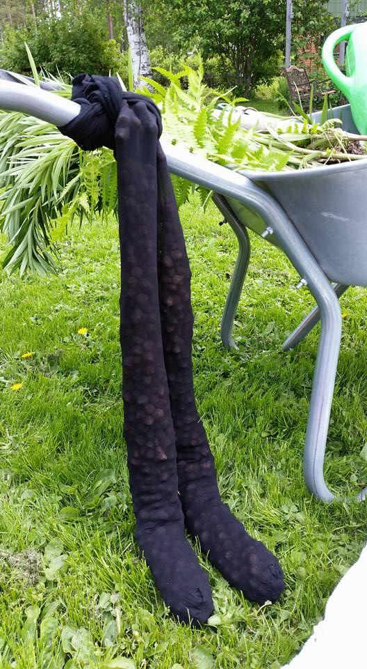 Sätt lecakulor i gamla nylonstrumpor innan du planterar. Går finfint att hälla bort jorden och spara lecakulorna till nästa gång