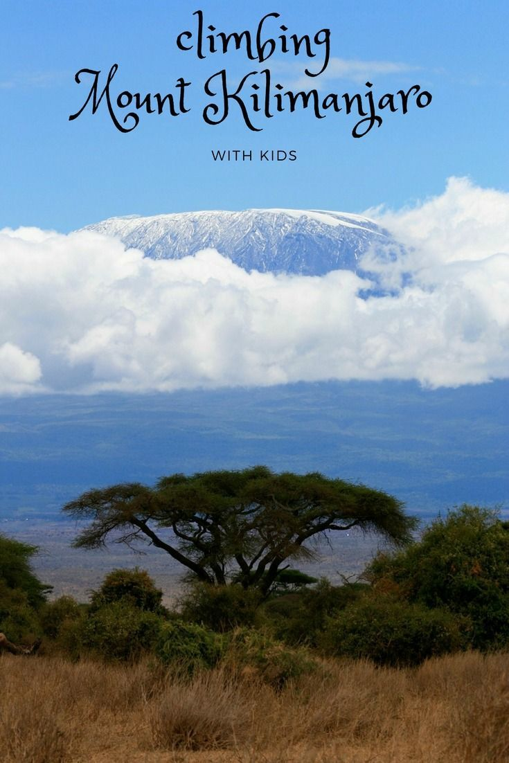 Climbing Mount Kilimanjaro with kids can be done. Here we show you the 5 best routes to the top.  ------------------------------------------------------- Climbing Mount Kilimanjaro | Where is Mt Kilimanjaro | Climbing Kilimanjaro | Highest Mountain in Africa | Tanzania attractions | What to do in Tanzania |