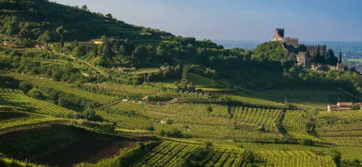 Soave harmonious landscape