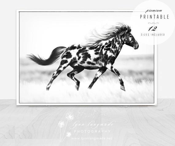 Printable Wall Art Black And White Horse Wall Art Dappled Etsy In 2020 Horse Wall Art Horse Wall Printable Wall Art