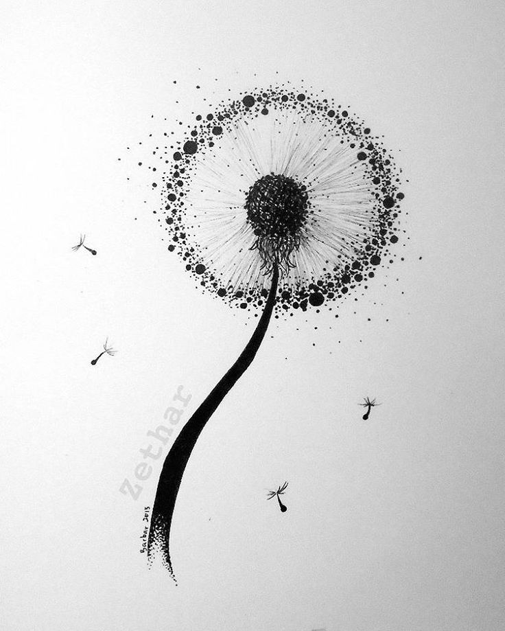 """#art #doodle #drawing #sketching #dotwork #dots #blackandwhite #blackink #black #plant #dandelion #project #tattooproject #commishion"""