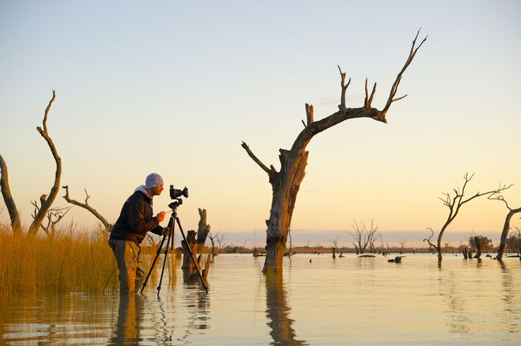 Shaun wading the waters at Kow Swamp. Victoria, Australia.