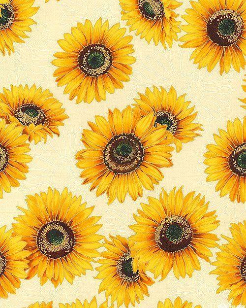 Sunflowers | Sunflower wallpaper, Sunflower art, Sunflower