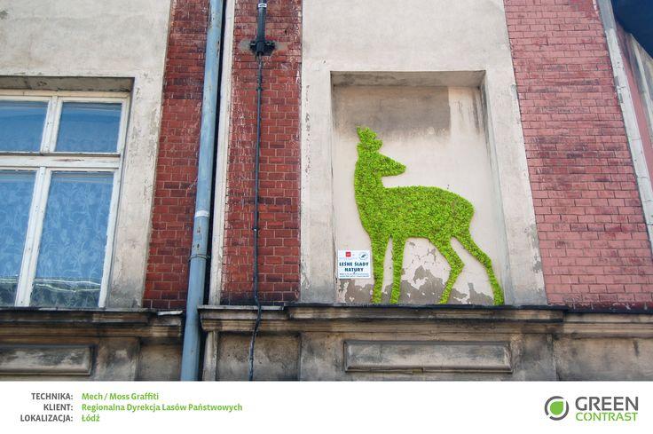 Moss Graffiti for Regionalna Dyrekcja Lasów Państwowych