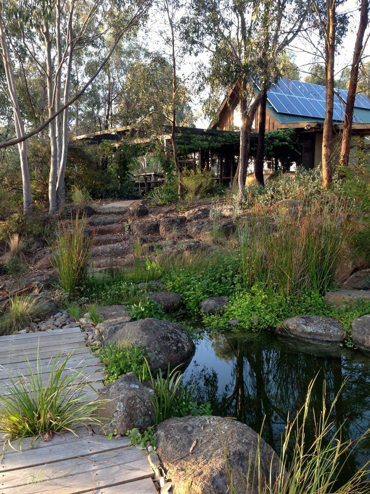 With a remnant bushland backdrop, this Sam Cox-designed garden in Wattle Glen (Victoria, Australia), is a wonderful example of how traditional natives, indigenous plants and considered design create a sense of place.
