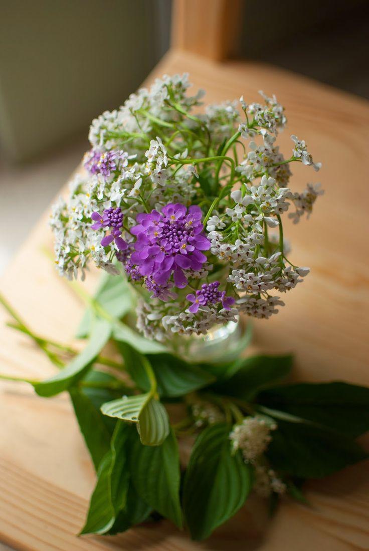 Zöld kert: Friss virágot az asztalra!