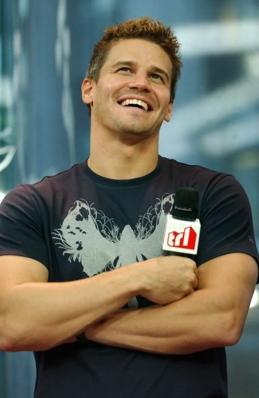 David Boreanaz.. I was watching a Bones marathon and now I'm obsessed.  Lol