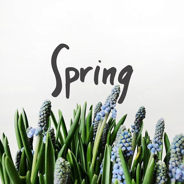 Monday Words: Welcome Spring | Fresh Exchange