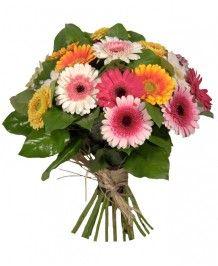 Buchete de flori Buchet din minigerbera