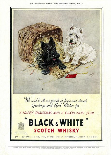 Black & White Scotch Whiskey in the Winter 1951