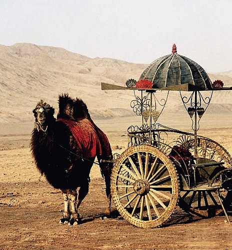 tracy porter..poetic wanderlust..-Travel in style... Flaming Mountains, the Silk Road,by Frau Chrissie