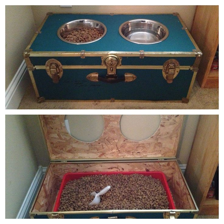 Upcycle an old trunk into a raised dog feeder. Plus use the bottom for storage!